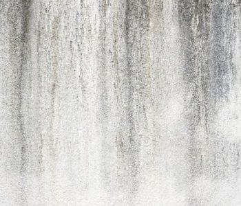 Promotor de lavabilidade da SYCO® é resistente ao dirt pick-up